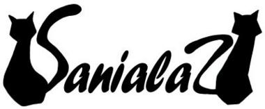 f:id:sanialaz:20100901004120j:image